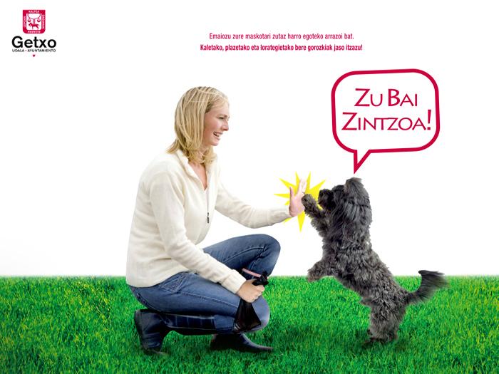 Getxo – Campaña mascotas